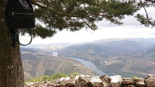 Utsikt över Douro