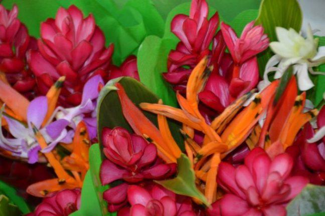 Blommor från Tahiti