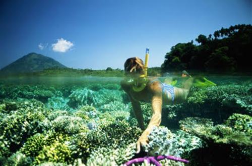 Menjangan-island-diving