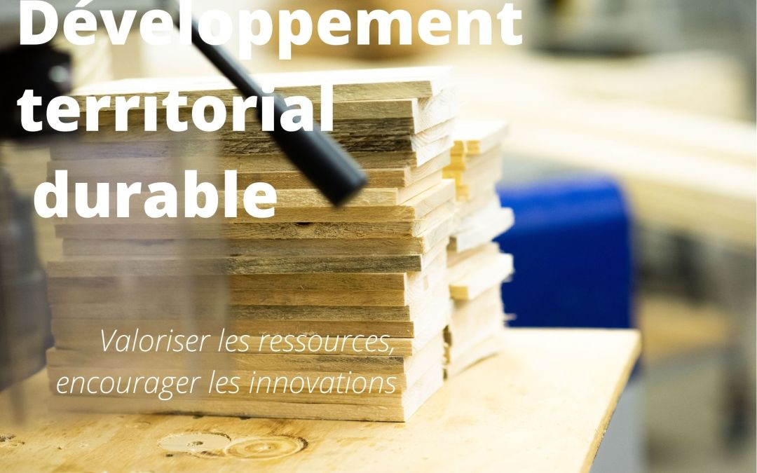 Pôles, filières, innovation, formation : quelles stratégies de développement territorial et d'attractivité envisager ?