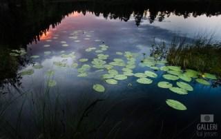 Solnedgang ved Mantjern i Nordmarka