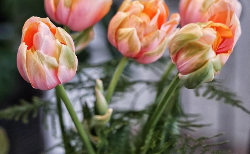 Vaser i grupp trivs tillsammans !