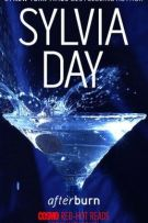 Review: Afterburn (#1, Afterburn and Aftershock) by Sylvia Day