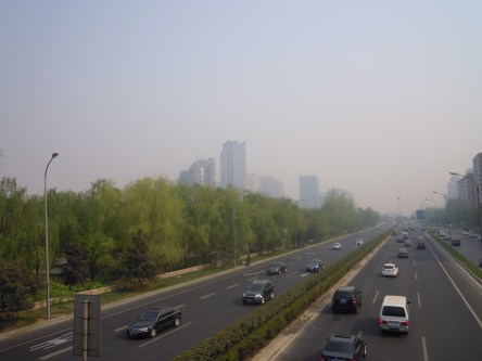 una giornata con smog