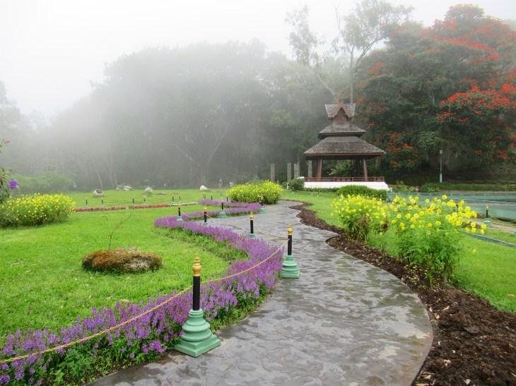 Ruusupuutarha