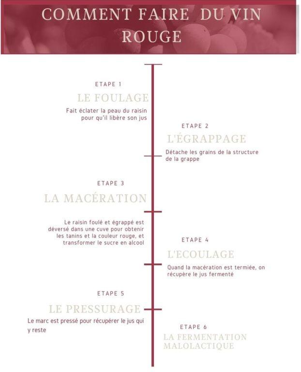 Infographie : Comment faire du vin rouge - Auteur : A.Godard