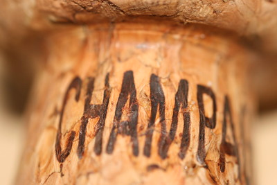 photo rapprochée d'un bouchon de Champagne, l'ancêtre du Pet Nat