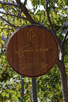 Vignoble_Rasse_Oenotourisme
