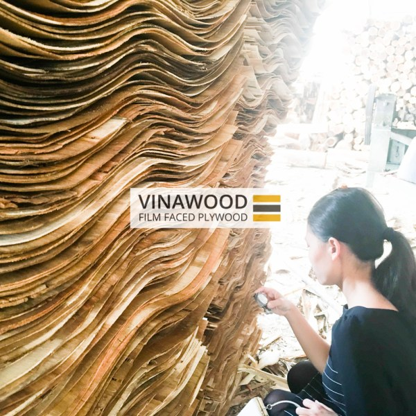 VINAWOOD-FILM-FACED-PLYWOOD-0403-4