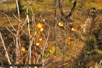 vinaymenonphotography_mountainbiking-196