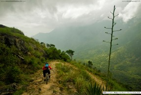 vinaymenonphotography_mountainbiking-201
