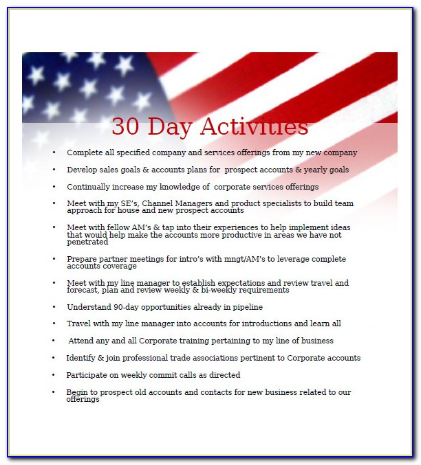 30 60 90 Day Business Plan Format