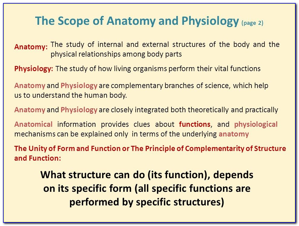 Anatomy And Physiology The Unity Of Form And Function 6th Edition Pdf Download