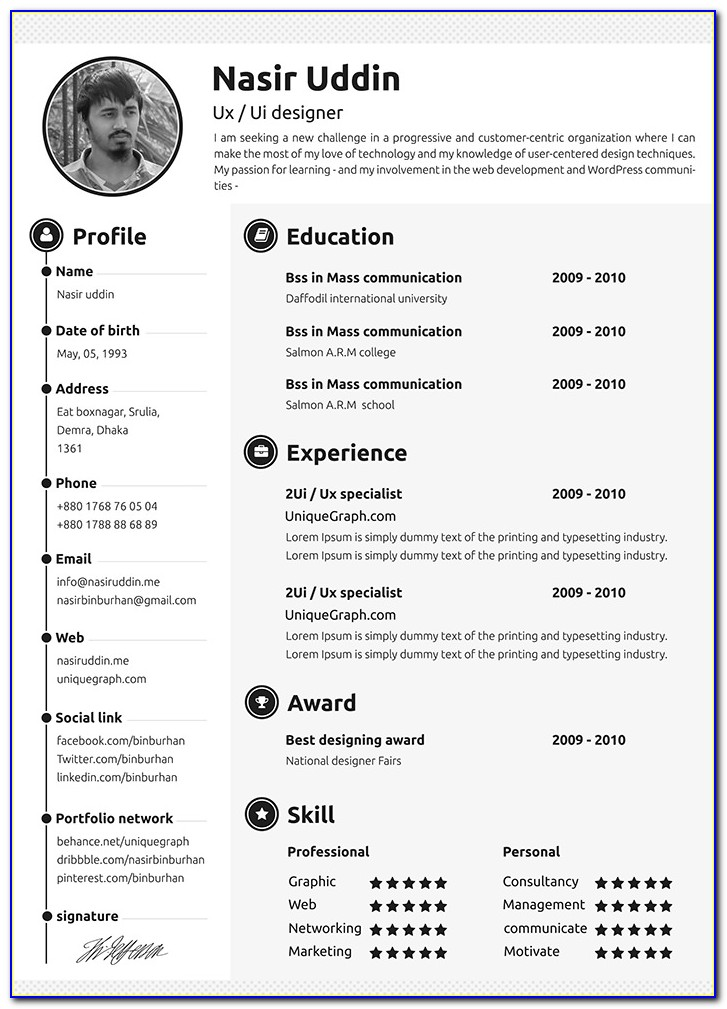 Attractive Professional Resume Templates Free Download