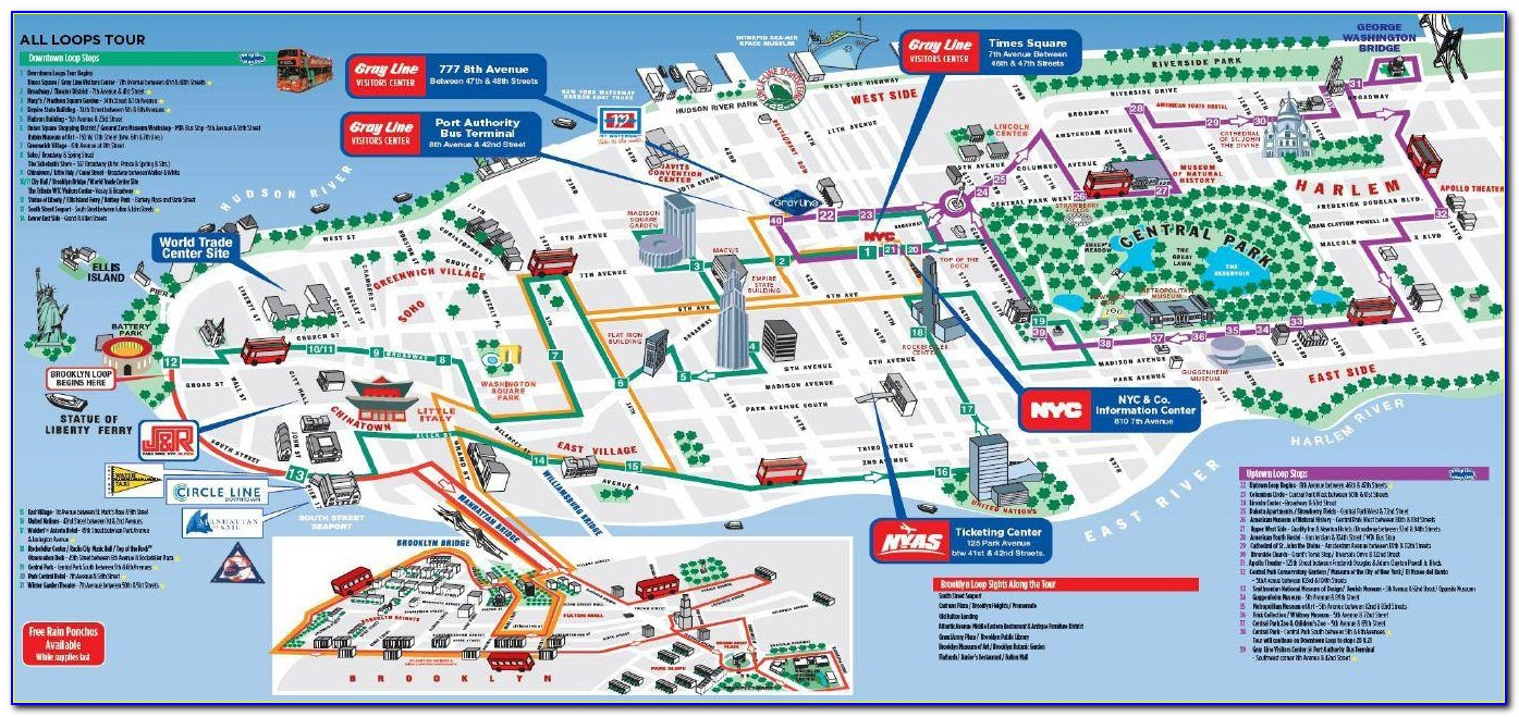 Auckland Hop On Hop Off Bus Route Map