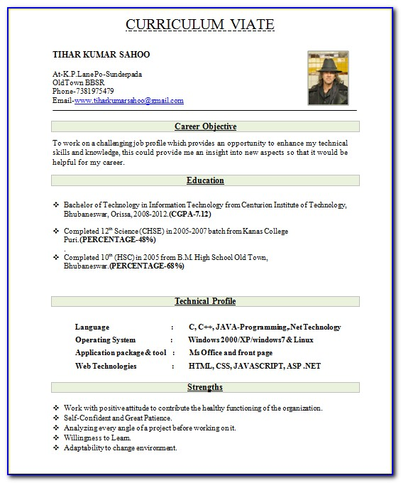 Best Resume Format Download For Experienced