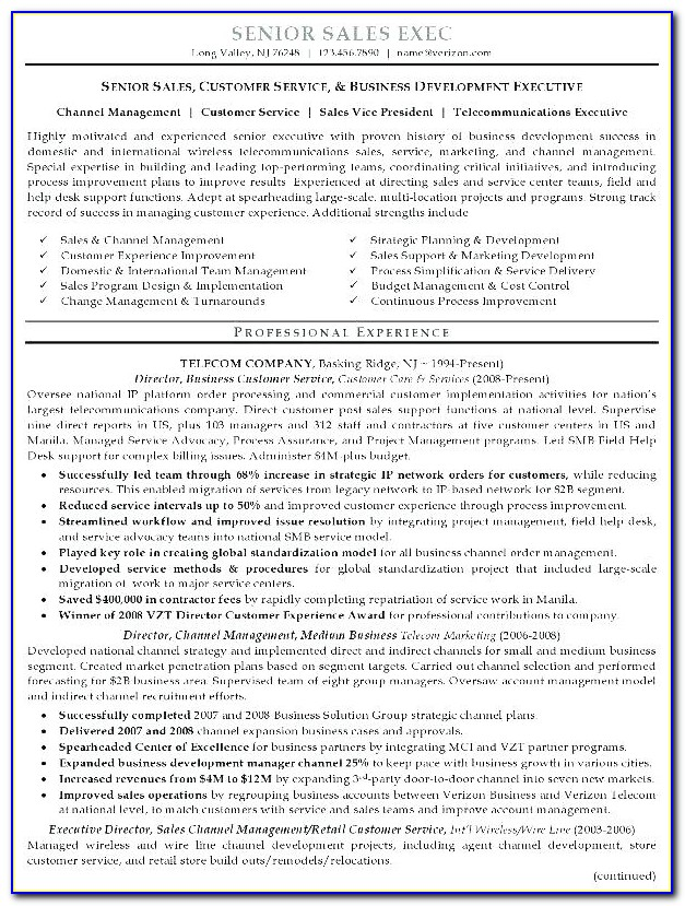 Careerbuilder Resume Writing Services Vincegray2014