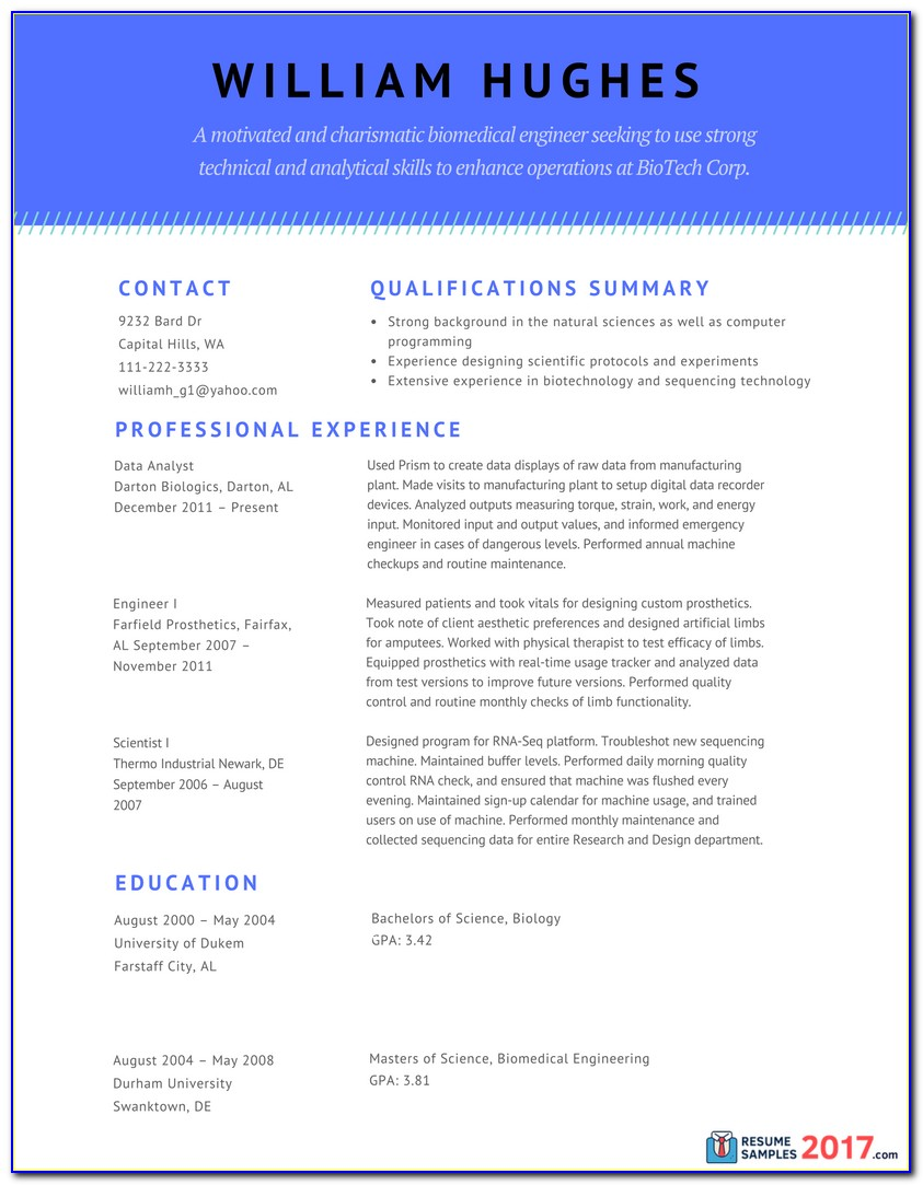 Combination Resume Template 2017 Free