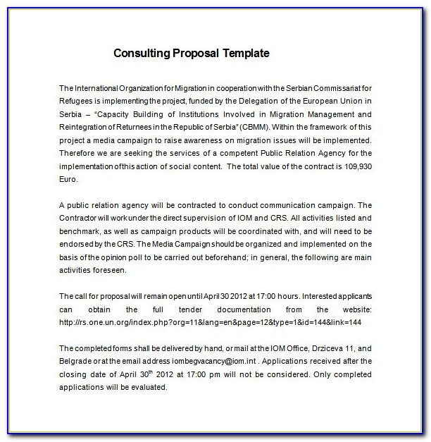Consulting Proposal Template Doc Free
