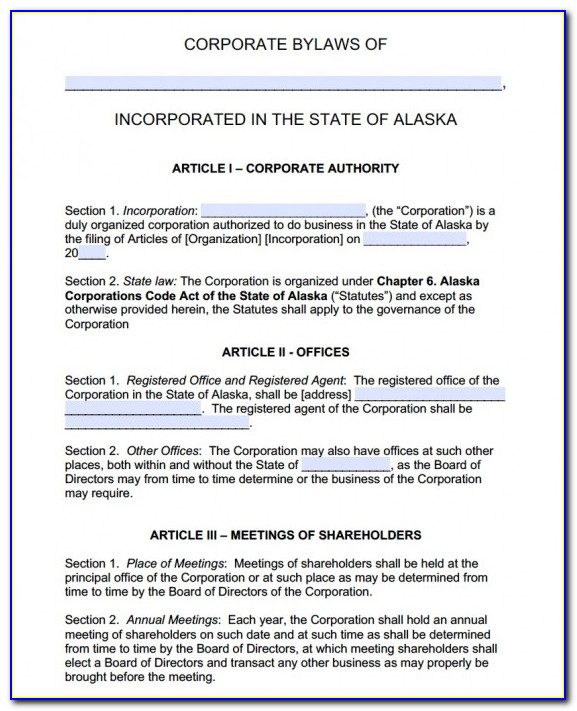 Corporate Bylaws Template Single Owner