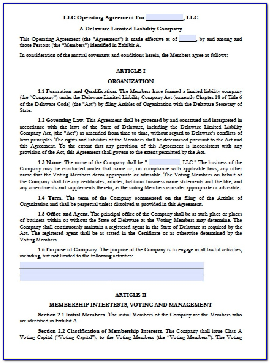 Delaware Series Llc Operating Agreement Template