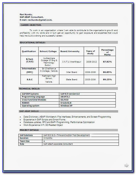 Downloadable Curriculum Vitae Format