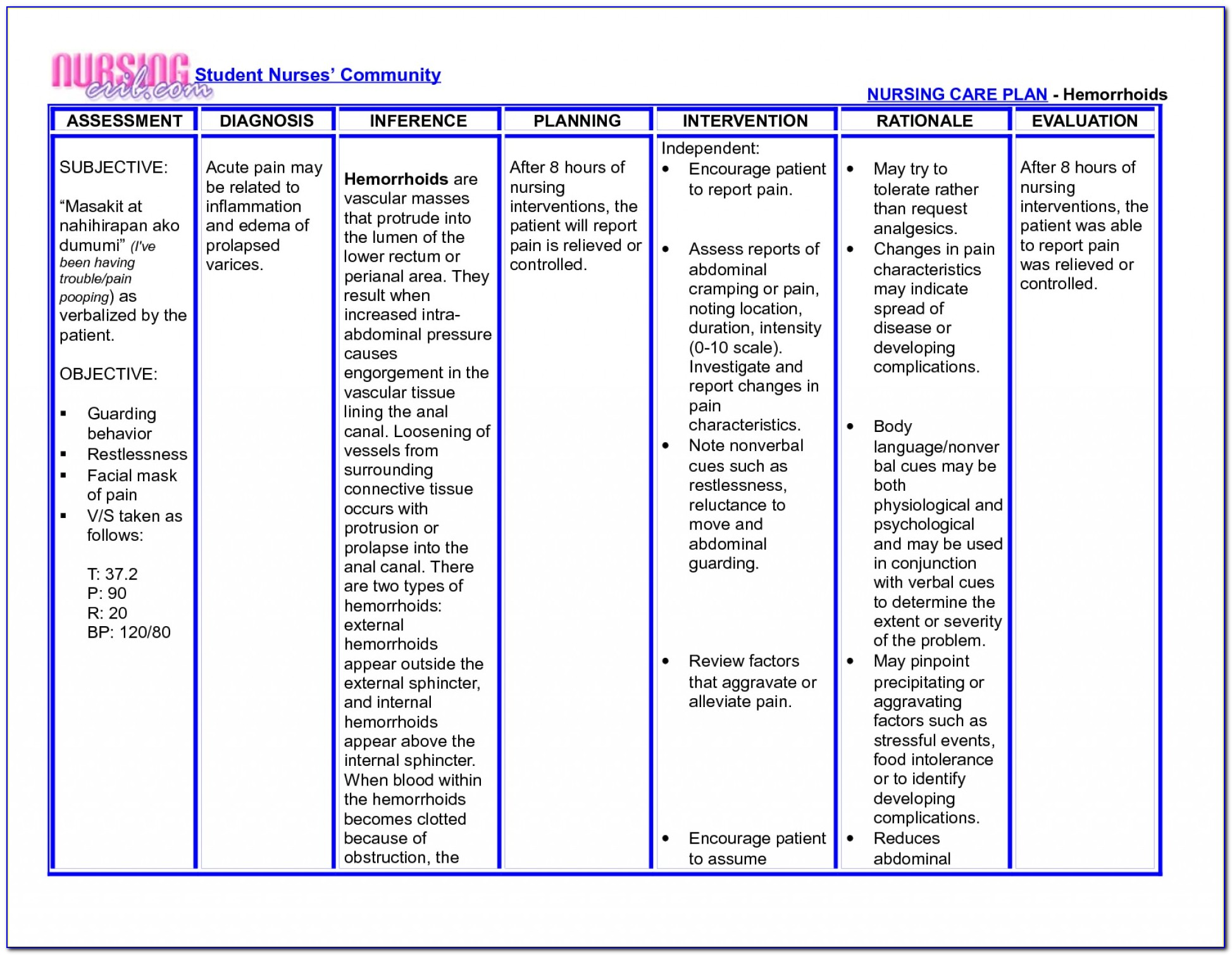 Elderly Care Plan Template Uk