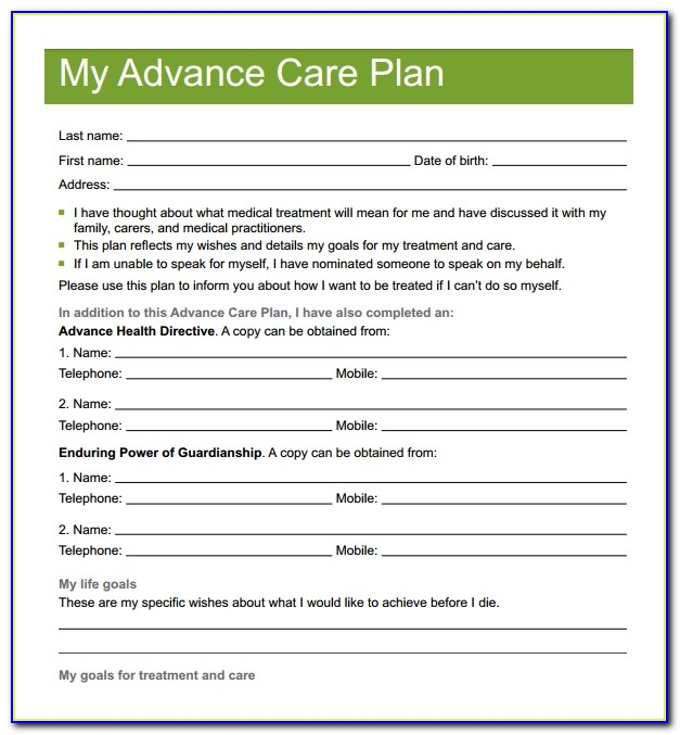Elderly Care Plan Template