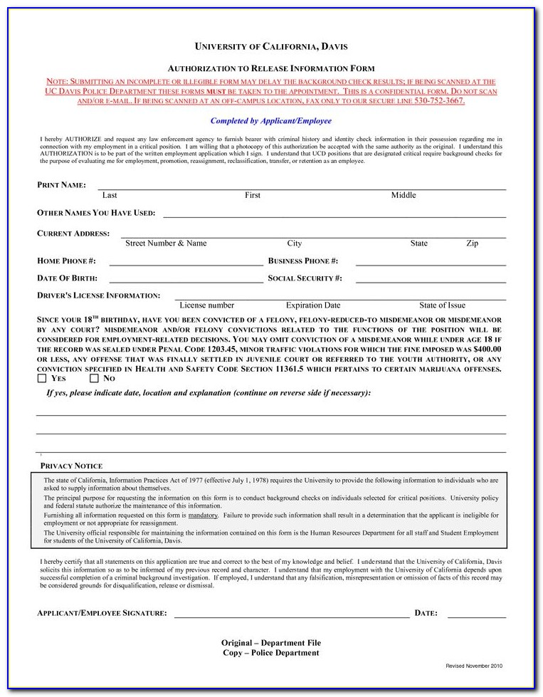 Employee Background Verification Form Template