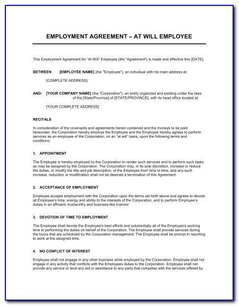 Employment Agreement General Template Amp Sample Form Biztree Employment Agreement Template