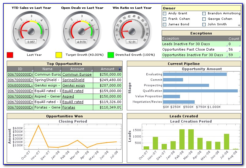 Executive Dashboard Format