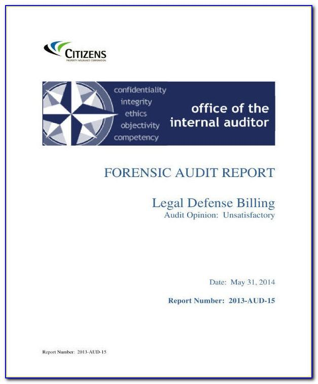 Forensic Audit Report Example