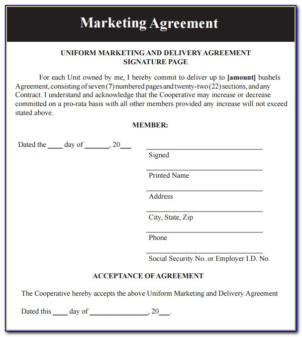 Free Digital Marketing Contract Template Vincegray2014