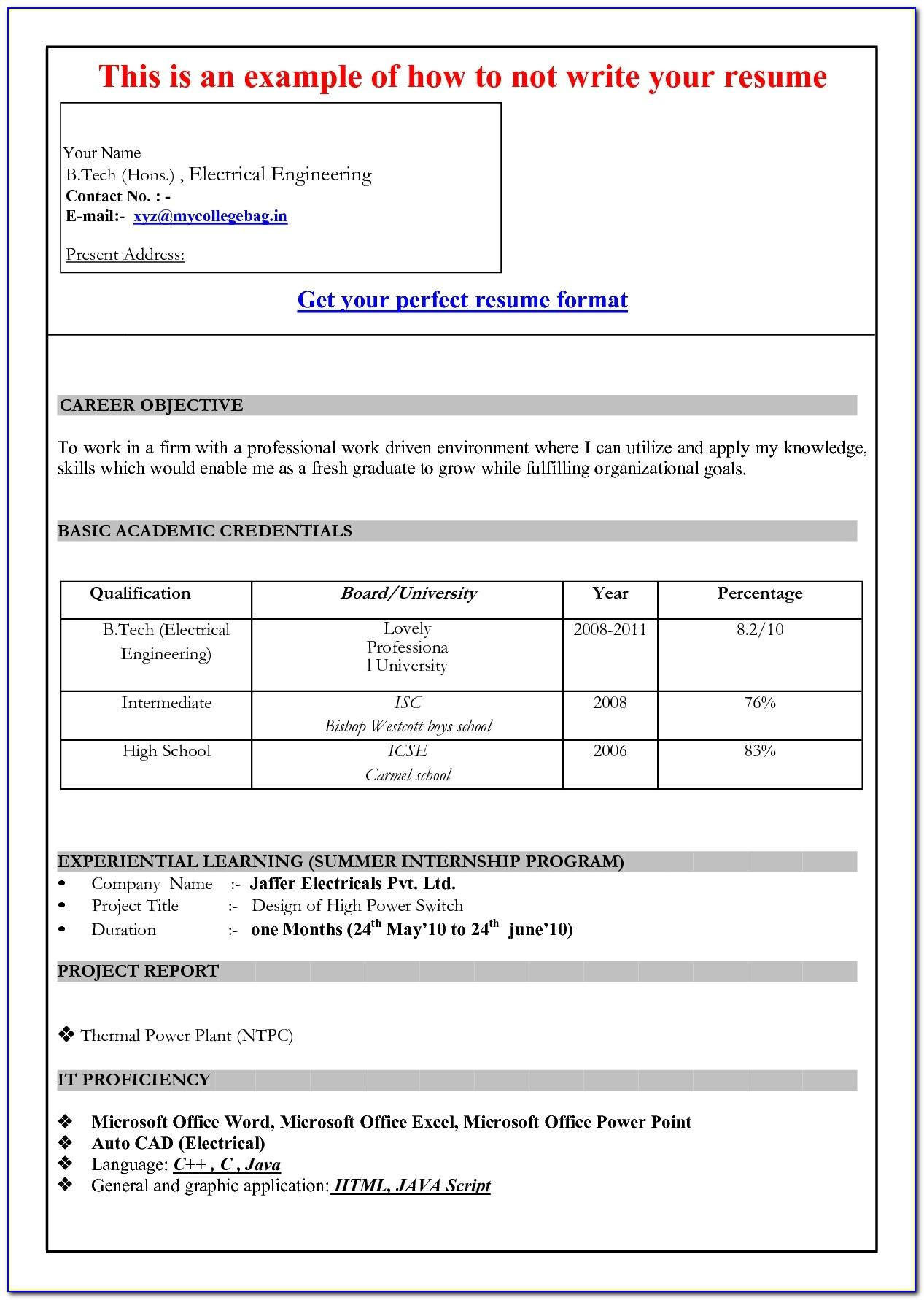 Free Download Resume Templates Ms Word