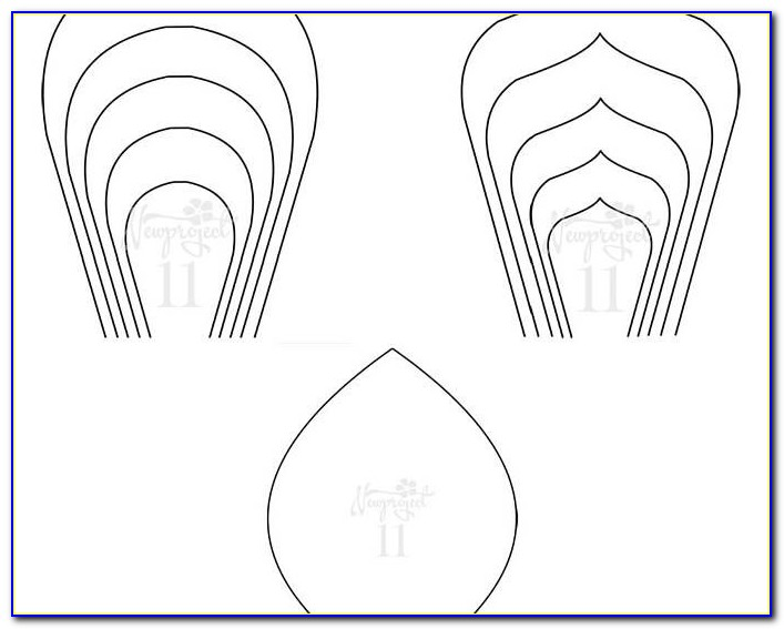 Giant Paper Flower Template Pdf