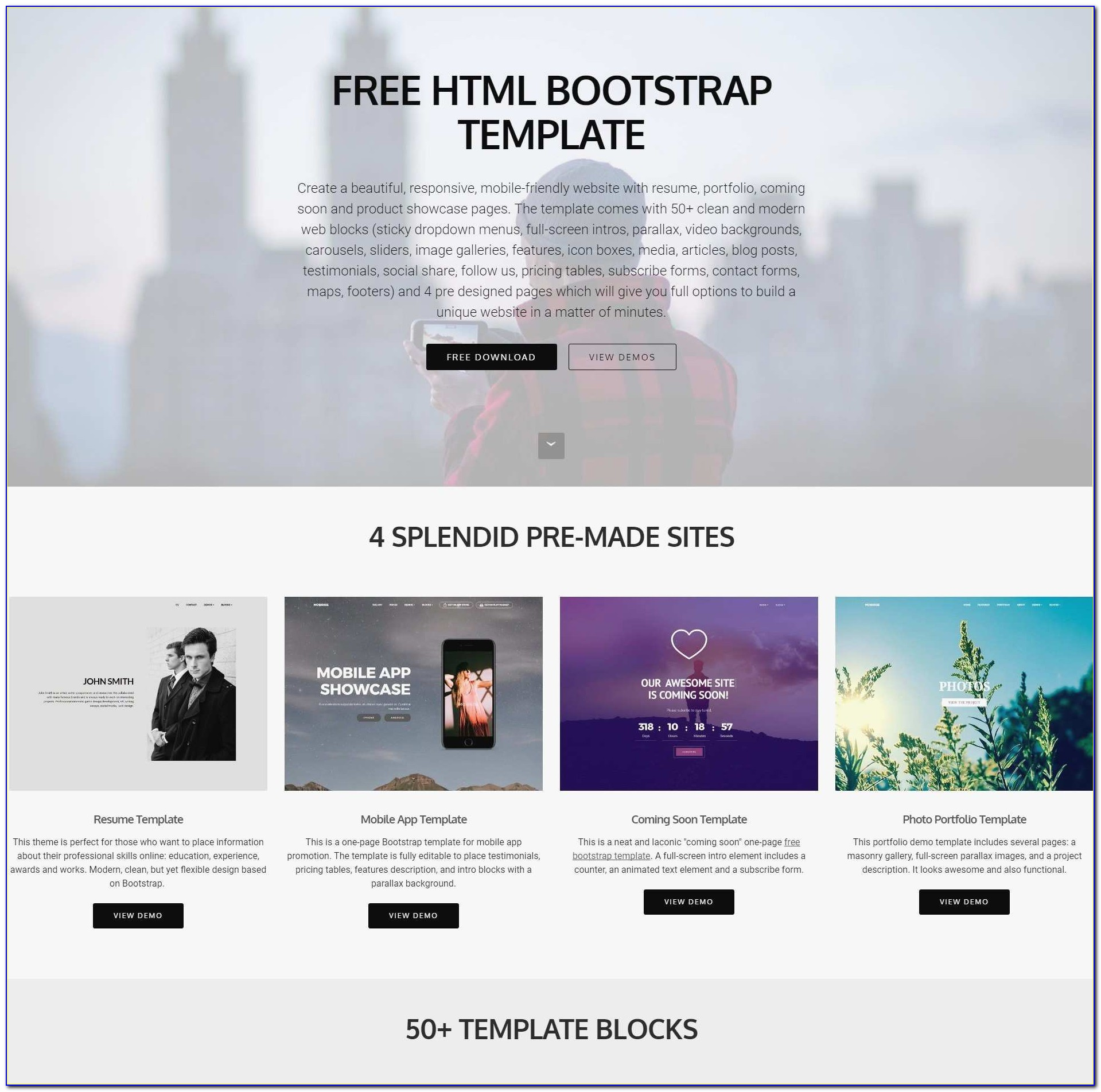 Free Professional Ebay Html Templates Lovely 30 Lovely Ebay Store Design Templates Free At Fice Manual Template