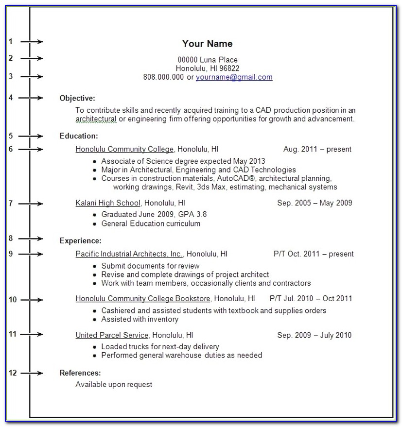 Resume Work Experience Format Best Sample Resume Without Job