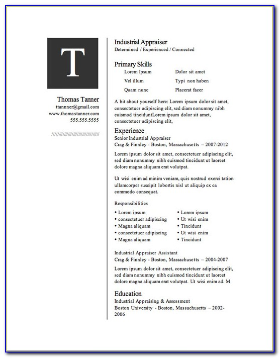 Infographic Resume Template Microsoft Word Free Download