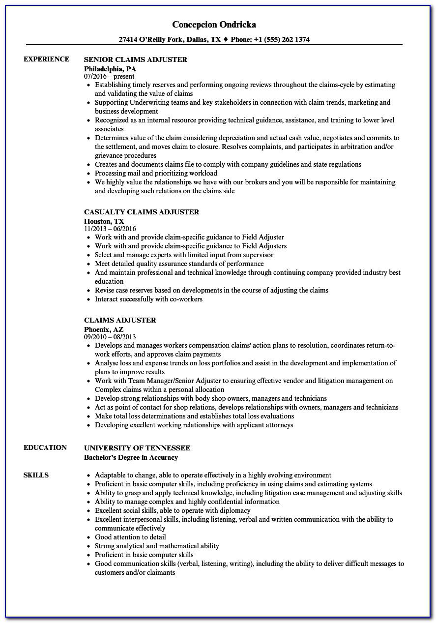 Insurance Claims Adjuster Resume Templates