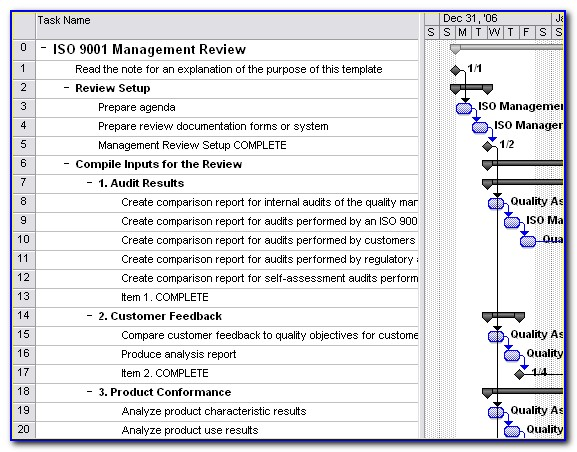 Iso 9001 Management Review Template Excel