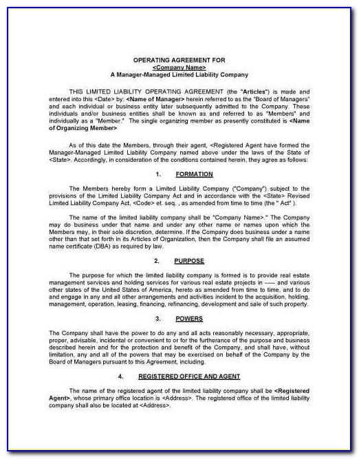Limited Liability Company Agreement Template