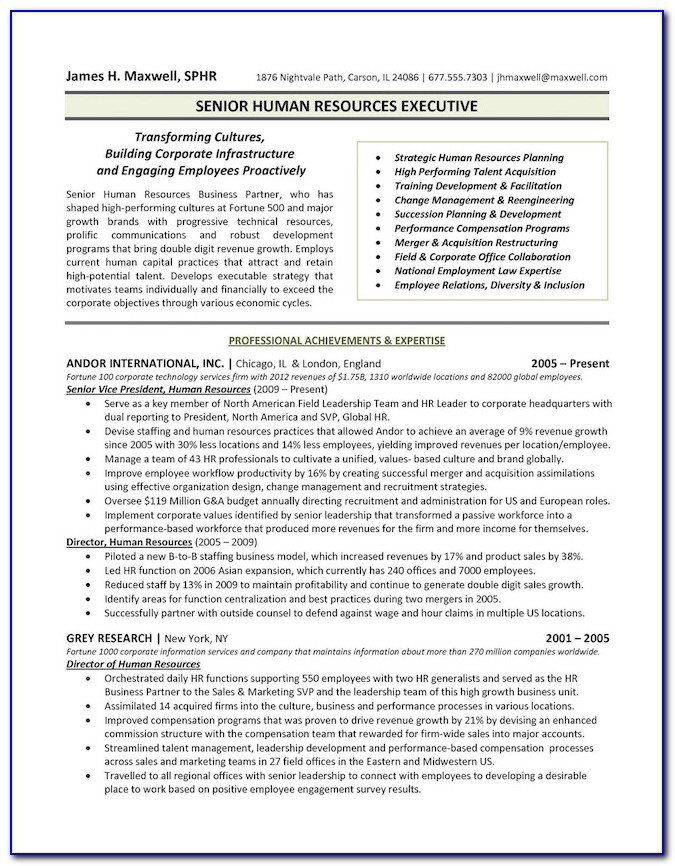 Marketing Executive Resumes Examples