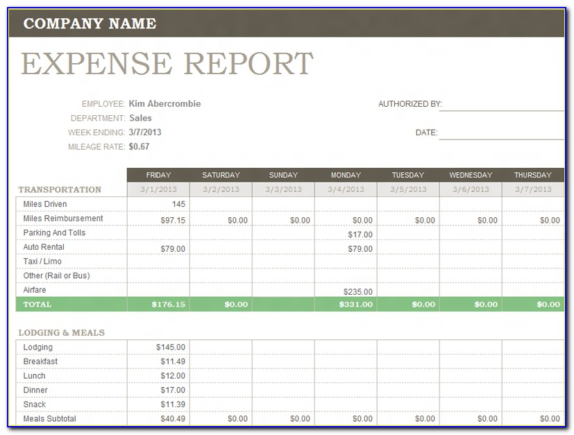 Microsoft Excel Expense Report Template