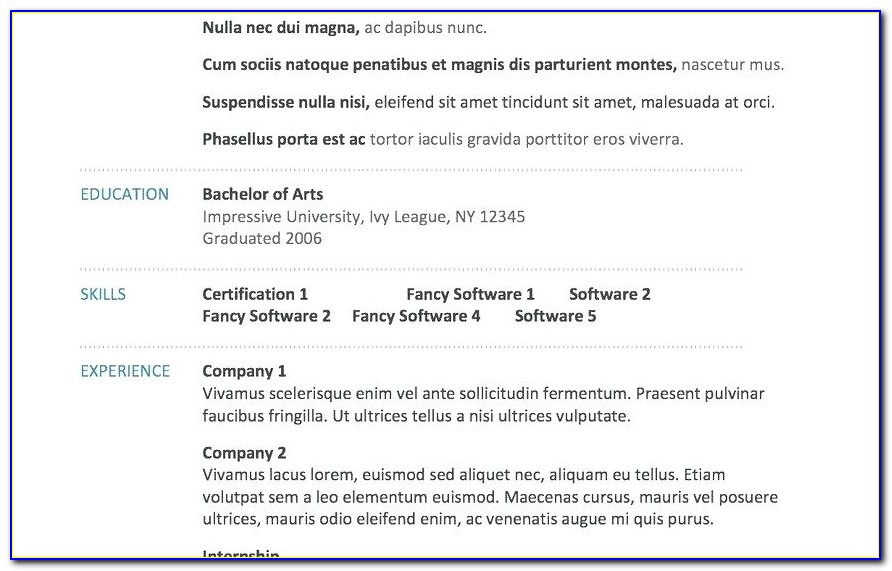 Mis Executive Resume Format In Word Download