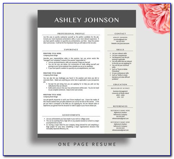 Modern Professional Resume Template 2017