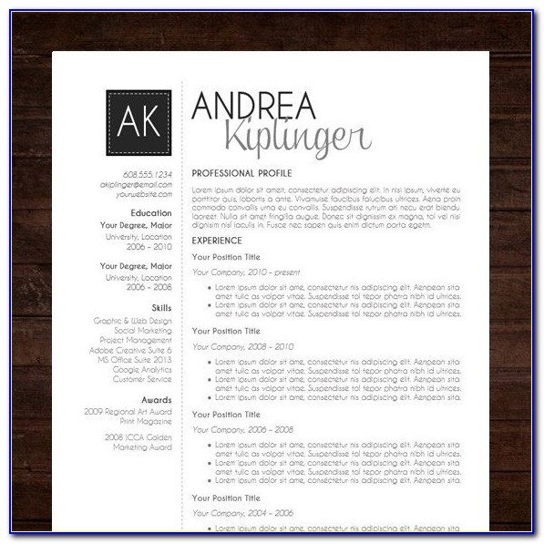 Modern Professional Resume Template Free Download