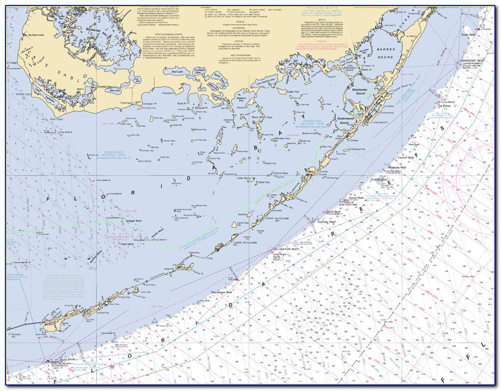 Nautical Map Naples Florida