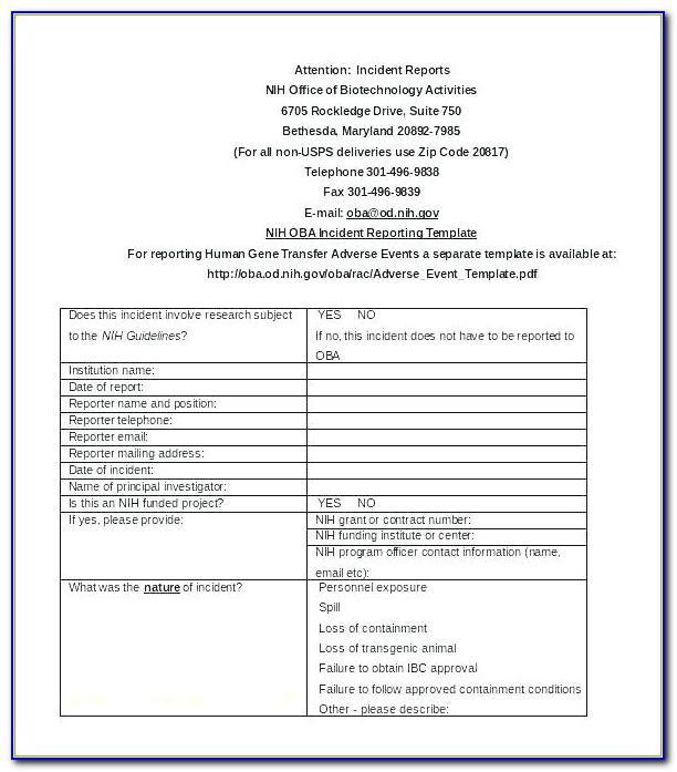 Non Medical Home Care Business Plan Template