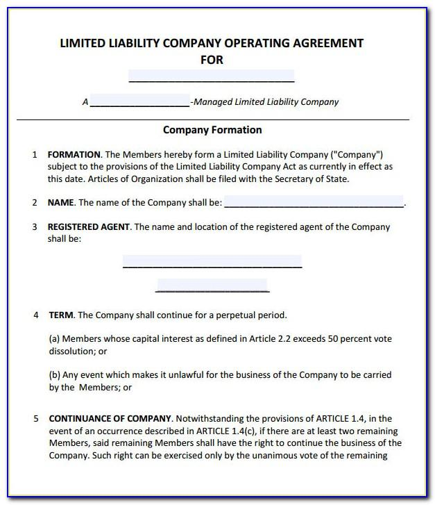 Operating Agreement Template For Partnership Llc