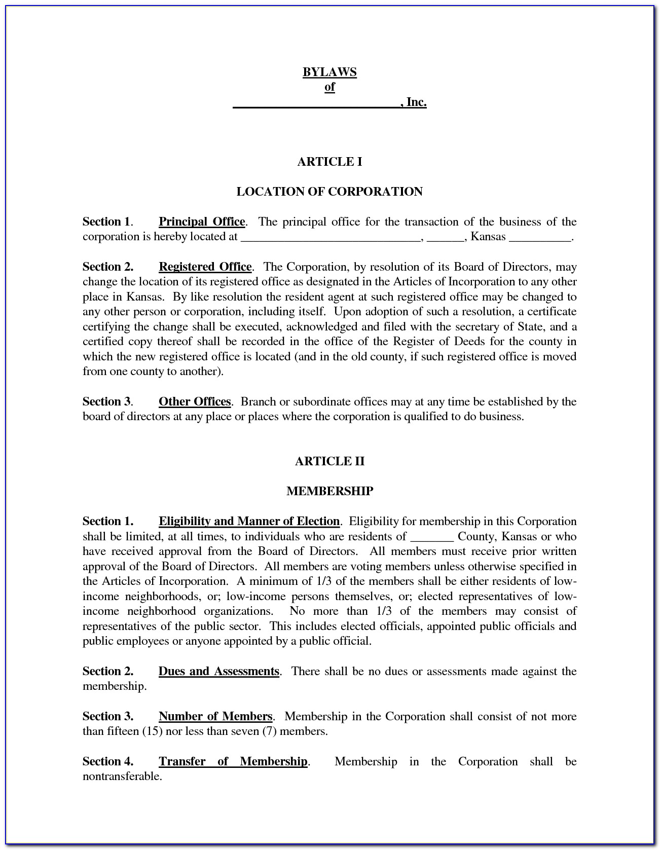 Organization Constitution And Bylaws Template